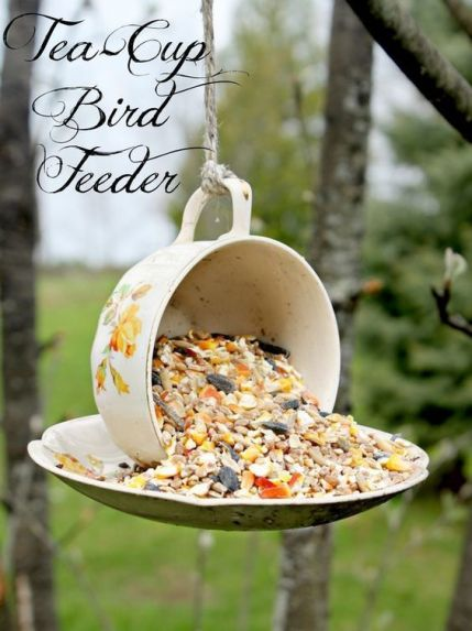 cup-and-saucer-feeder