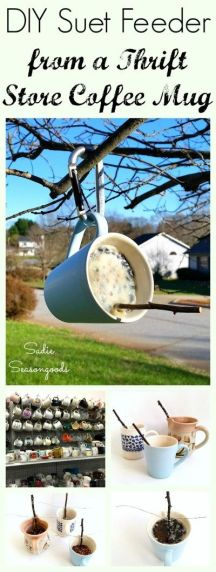 easy to make bird feeders